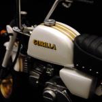 gorilla_01_07